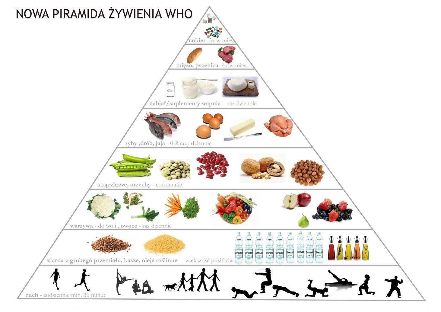 piramida-who2-1