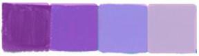 kolory-fiolet